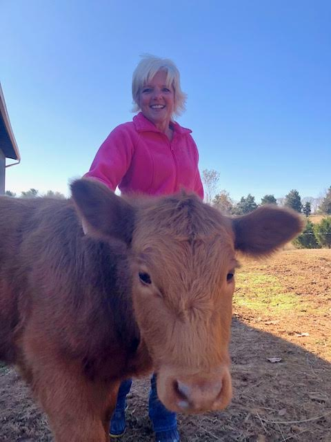 Episode 17                                         Cows Come Home Sanctuary –                   Randie Gentry